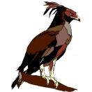 Vögel 1 vögel 2