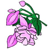 Gratis Malvorlagen Blumen