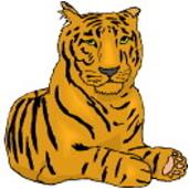 Tiger Bilder Zum Ausmalen